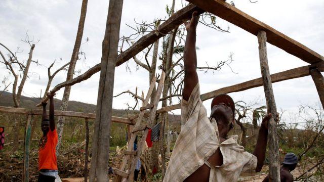 Un grupo de haitianos construye la base de una casa con palos de madera tras el paso del huracán Matthew.
