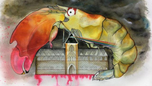 Desenho de camarão com referências de músicas do Pink Floyd