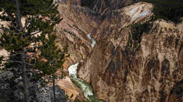 The Grand Canyon of the Yellowstone River in Yellowstone National Park, Wyoming