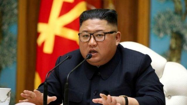 북한: 한국 정부, 김정은 위독설에