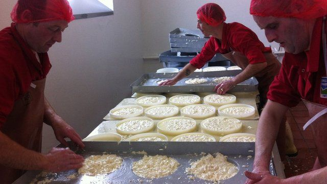 Cheesemakers at work