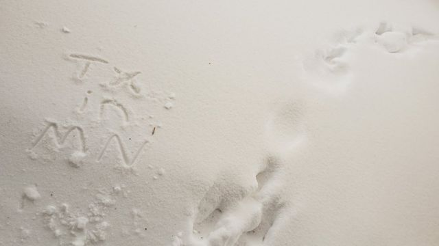 Why is brown snow falling in the US Midwest?