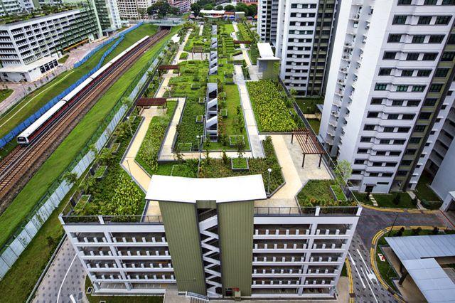 Winning photos of great gardens