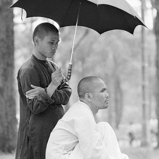 Một thành viên của nhóm phiến quân phật giáo Việt Nam che ô cho nhà sư Thích Trí Quang, người lãnh đạo nhóm năm 1967