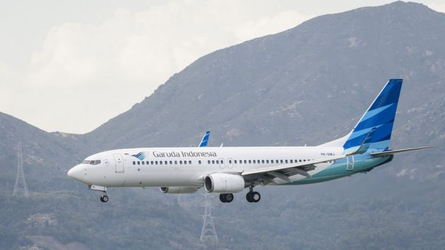 Garuda looks to scrap Boeing 737 Max order after crashes