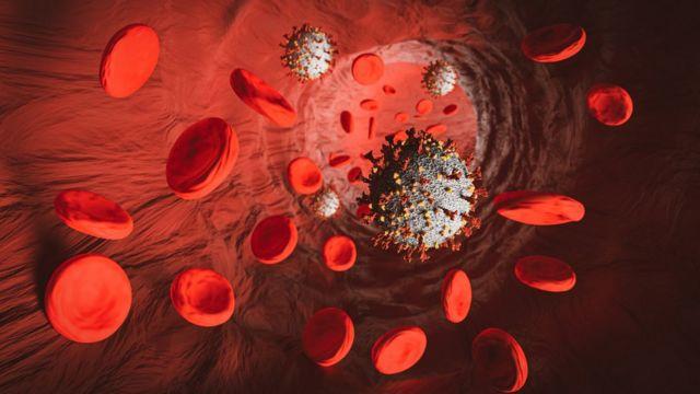 Ilustração mostra elementos do sangue e representação do coronavírus em tubo, como uma veia