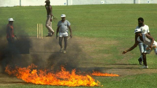 क्रिकेट पिच