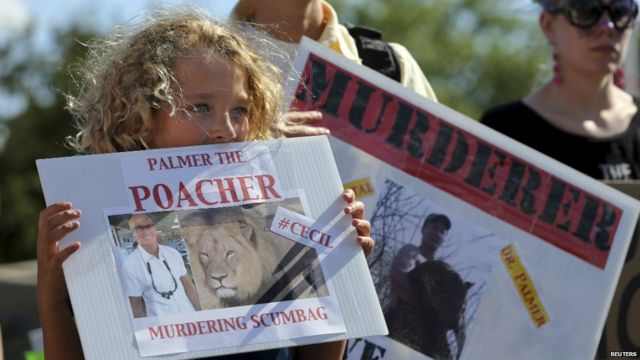 Protesters rally outside the dental clinic run by Walter Palmer in Minnesota - 30 July 2015