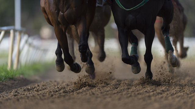 Patas de cavalo durante uma corrida