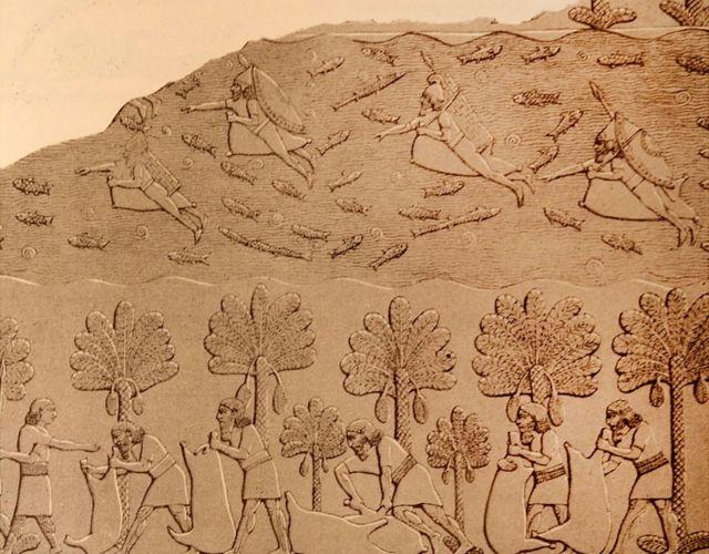 Escultura en relieve de Nínive que representa a los pescadores que nadan para pescar mientras otros hombres recogen la cosecha en el suelo.