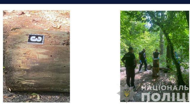 Рядом с телом было обнаружено три пенька