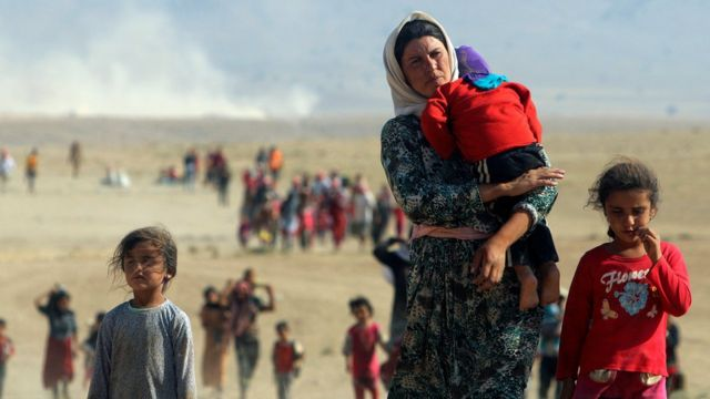 Iraqi Yazidis flee attacks by IS militants in the Sinjar region of Iraq (11 August 2014)