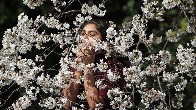 زن با گیاه گلدار