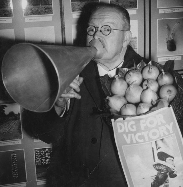 1941-ci ildə hərbi vaxtların bostançılıq komitəsinin sədri