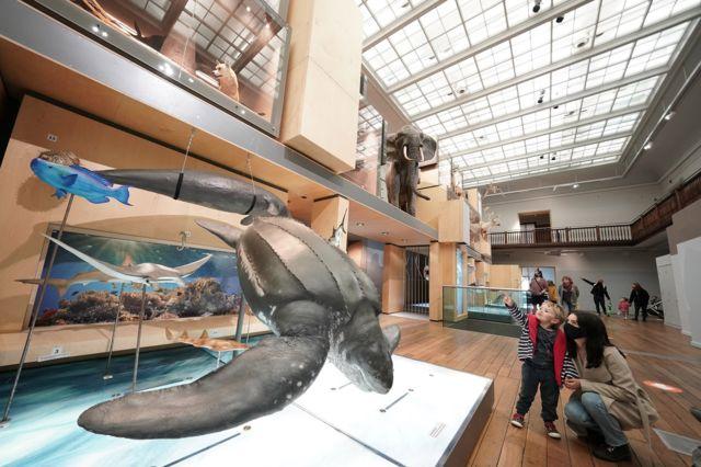 Büyük Kuzey Müzesi