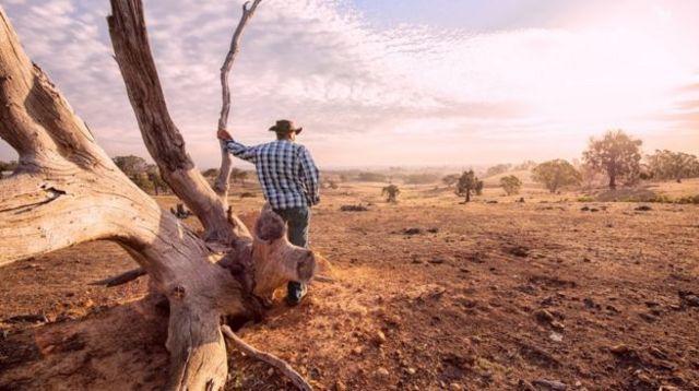 ภัยแล้งและอุณหภูมิที่สูงเป็นประวัติการณ์ ล้วนเป็นปัจจัยที่ทำให้เกิดไฟป่ารุนแรงในออสเตรเลีย