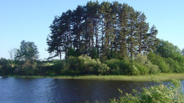 Ріннюкалнс на березі річки Салаци у Латвії - відома стоянка прадавніх людей