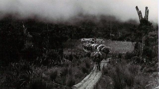 Combatientes de las FARC en los inicios del movimiento.