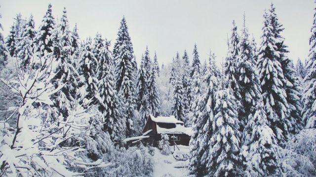 Дерев'яна хатка десь на масиві Боржава
