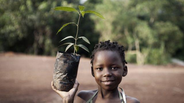 African girl planting mango tree