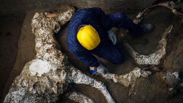 Кінь був осідланий і його власник, як припускають археологи, намагався втекти від виверження Везувію. Але не встиг