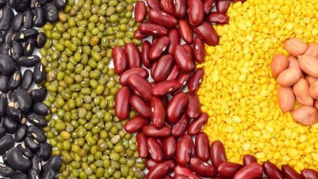 Feijões e outros grãos