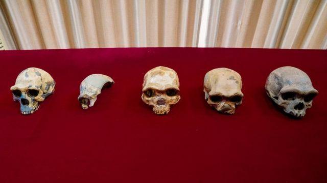Çin'de bulunan kafatası