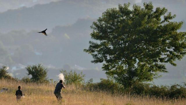如果枪支消失的话,狩猎与农业会出现许多潜在的风险和问题。