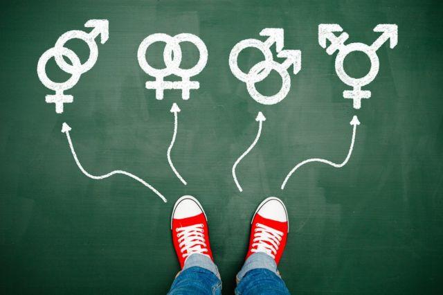 Opciones de orientación sexual.