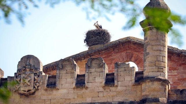 """""""Реконструкция ощущений"""". Пять малоизвестных туристических объектов на юге Украины, которые стоит посетить"""