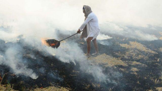 पराली जलाता किसान
