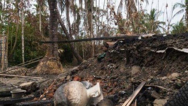 ရွာတွေကို မီးရှို့ ဖျက်ဆီးမှုတွေလည်း အာဆာ လုပ်ခဲ့တယ်လို့ အစိုးရက ပြောကြားထား