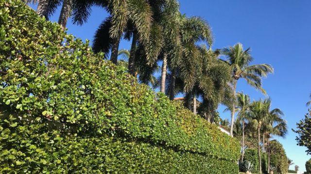 Una vivienda en Palm Beach