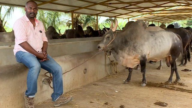 S Nizamudeen with his prize bull Ramu