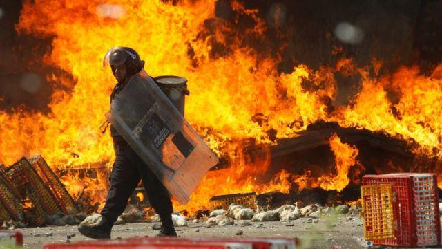 デモ参加者はニワトリを運ぶトラックに火を放った(19日)