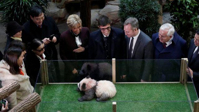 Panda, Cina, Prancis