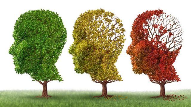 Árboles que van perdiendo las hojas e ilustran de manera conceptual la pérdida progresiva de memoria.