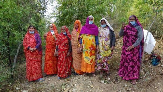 زرع سكان قرية بيبلانتري أكثر من 350 ألف شجرة حتى الآن