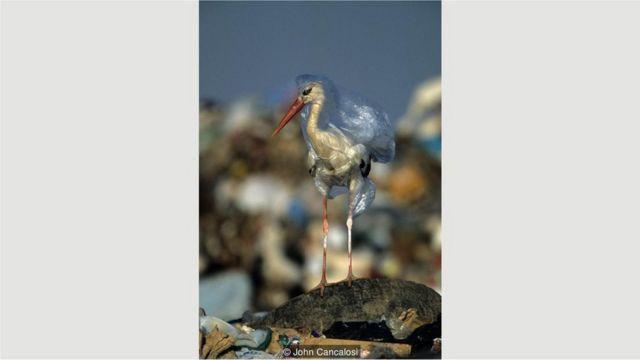 leylək plastik torbalar