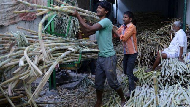 ऊसाला एफआरपीपेक्षा 200 रुपये जास्त देण्याचा कारखान्यांचा तोडगा