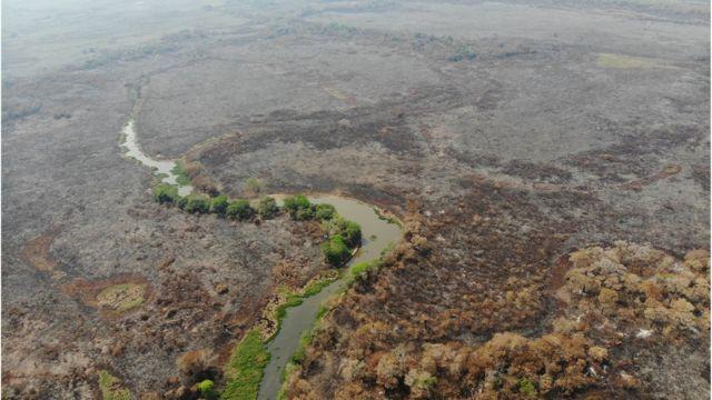 Pantanal devastado