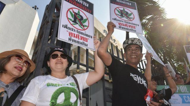 태국의 한 시위 현장에서 사람들이 '의료용 대마 합법화'를 외치고 있다