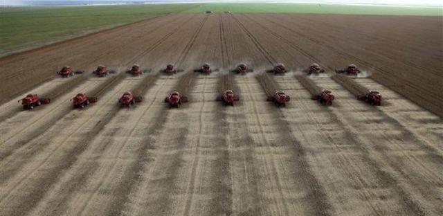 Colheita de soja em Mato Grosso, Estado com a maior produção de grãos do país