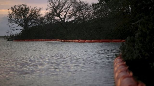 Brazil dam toxic mud reaches Atlantic via Rio Doce estuary