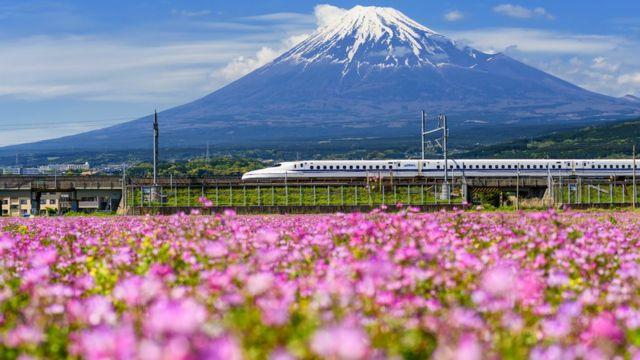 El tren bala Shinkansen pasando frente a la Montaña Fuji.