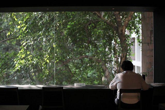 คนนั่งอ่านหนังสือ