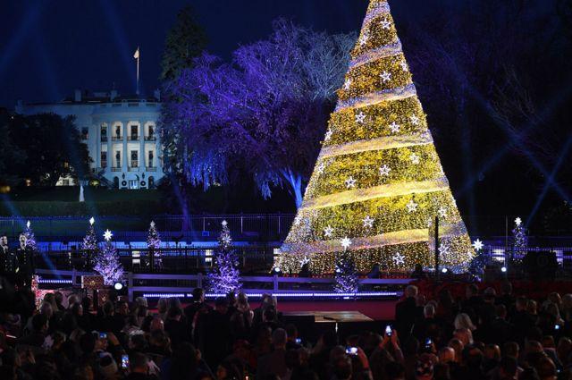 A cerimônia da Árvore de Natal Nacional