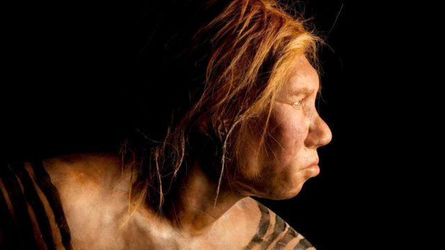 Recreation of the face of a Neanderthal woman