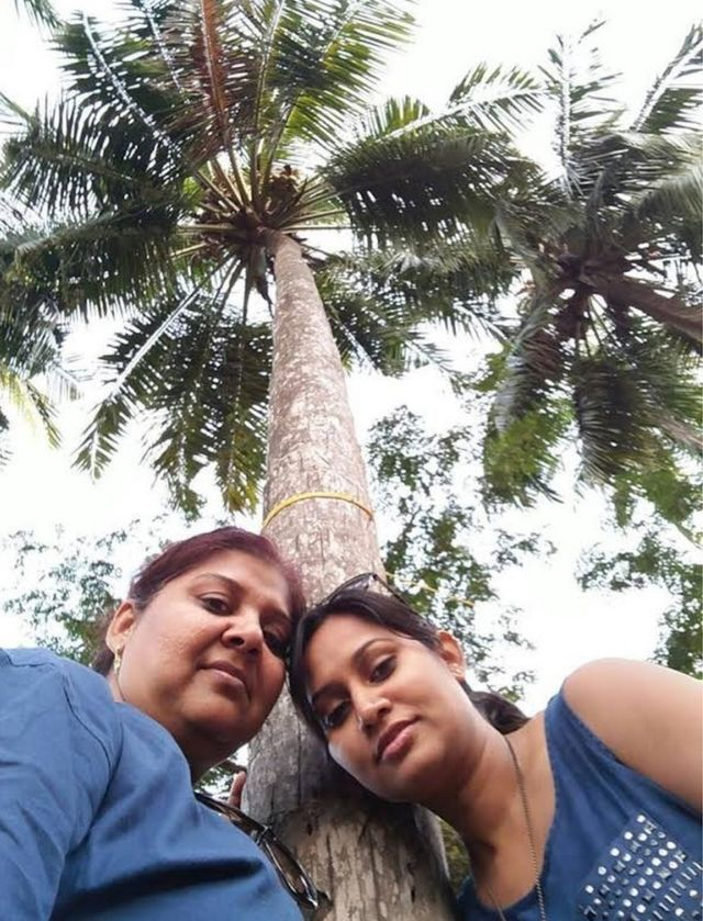 Why has Goa decided the coconut palm is no longer a tree?