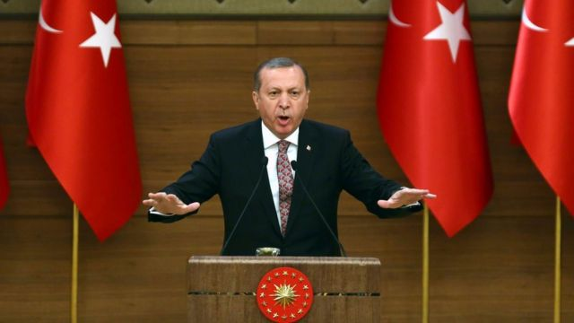 Turkey president wants to strip 'terror supporters' of citizenship